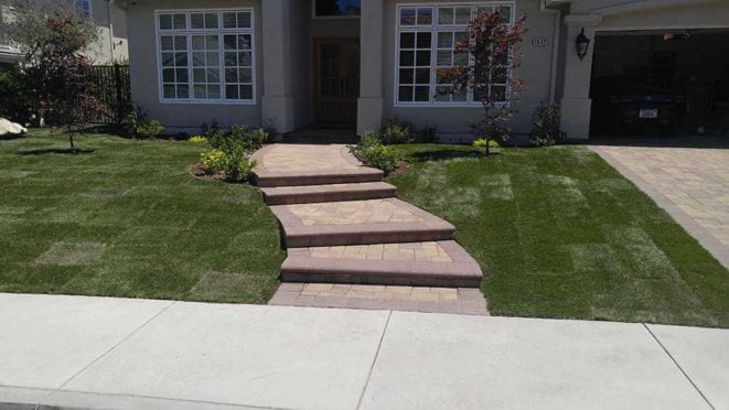 Steps: Custom Curved Steps with Mocha Bullnose